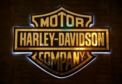 Harley Davdison Shield
